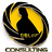 dbl07consulting icon