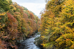 River Garry (seniorshot2) Tags: autumn perthshire killiecrankie rivergarry passofkilliecranke