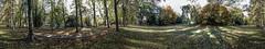 Promenade Mnster (5.0OG) Tags: germany deutschland autum herbst promenade muenster mnster liebeshgel