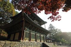 Magok Temple (HDH.Lucas) Tags: morning nature architecture landscape temple culture korea lucas cannon  hanok
