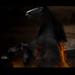 Fire Demon Unchained Denver Broncos Buck Fire