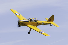 DHC1 Chipmunk (Linton Snapper) Tags: canon bedford aviation bedfordshire chipmunk dh shuttleworth oldwarden tonysmith