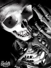 Good Day To You (Charlotte Lawrence Arts) Tags: white signs black anime dark skulls skeleton skull hands ribs bones ribcage bone spine rib skeletons spines ram flamable