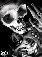 Good Day To You (Charlotte Lawrence Arts) Tags: white signs black anime dark skulls skeleton skull hands ribs bones ribcage bone spine rib skeletons spines ram flamable