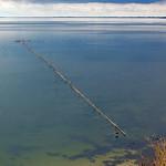 Reusenfischen bei Klein Zicker auf Rügen thumbnail
