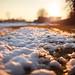 Tracce d'inverno - Winter signs