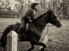 Charlize Riding 1 (Regular Expressions) Tags: horses jumping riding hillsidehunterjumpers