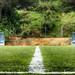 Fútbol en la naturaleza