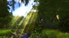 RYL Fairy fly (rosabellarosesl) Tags: wood contest fairy unicorn sunbeam sonnenstrahl sonnenstrahlen slphoto lostunicorn