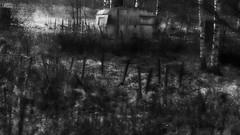 a place in the sun (blazedelacroix) Tags: dark moody varum aplaceinthesun