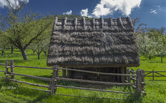 Cuttle shelter with thatched roof - I (KF-Photo) Tags: zaun stroh gegenlicht strohdach beuren unterstand strohhütte viehunterstand