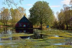 Huisje van Uneken (Astrid1949) Tags: mei van huisje drenthe 2016 bargerveen bestcapturesaoi uneken elitegalleryaoi