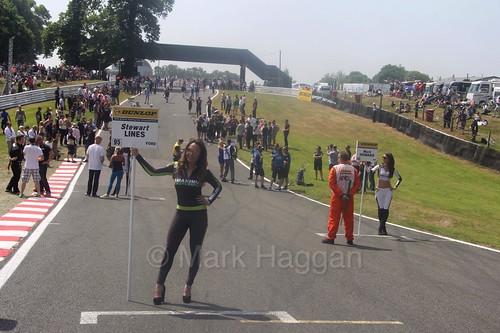 Stewart Lines' grid board during the BTCC weekend at Oulton Park, June 2016