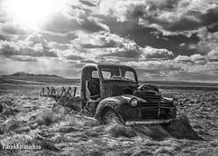 GMC Bacon - BW (Pat Kavanagh) Tags: white canada black abandoned field truck pickup alberta rusting gmc farmersfield farmtruck