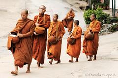 (d.huepe) Tags: street orange walking thailand calle asia peace buddha religion pray paz tailandia calm monks caminar caminata calma religions budhist searching equilibrium caminando equilibrio armona budismo budhism monjes busqueda buscar naranjo orar religiones pedir peregrination armony peregrinar maesalong