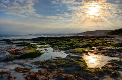 Rock pools at Downderry, Cornwall (Baz Richardson (due back on 27 May)) Tags: coast cornwall beaches rockpools downderry