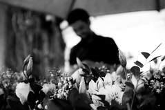 Ltus (renanluna) Tags: flowers blackandwhite bw man flores fuji br lotus sopaulo monochromatic pb sp fujifilm 55 homem pretoebranco monocromia 011 ltus x100 renanluna fujifilmfinepixx100