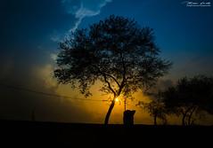 Sunset Silhouette (Mousam Samanta) Tags: sunset sun silhouette 1855mmf3556g nikond5100 nikonafs50mmf18g experiencebengal