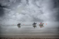 Seahorses (nigdawphotography) Tags: sea horses horse reflection beach water animal mammal sand waves ride exercise wave riding shore essex southend equine