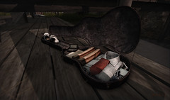 Bags are packed (Leonorah Beverly) Tags: secondlife frisland
