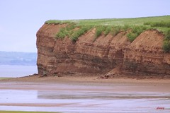 Field Being Pulled Over the Cliff (photo fiddler) Tags: cliff canada field june erosion 2016 minasbasin