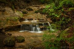 Wagner Falls Area (2016-06-16 1192) (bechtelsf) Tags: trees water waterfall woods nikon stream michigan upperpeninsula munising wagnerfalls d810 nikon2470mm28