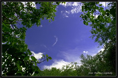 Okno na wiat / window to the world 18_06_2016 (dariusz_lipinski) Tags: park flowers trees sky sun colour nature beauty clouds fun photography europa europe different wind joy poland polska fotografia kwiaty inny zabawa soce przyroda kolor wabrzych chmury niebo walbrzych drzewa rado wiatr pikno lowersilesia dolnylsk dariuszlipinski dariuszlipiski dariuszlipiskiwabrzych dariuszlipinskiwalbrzych