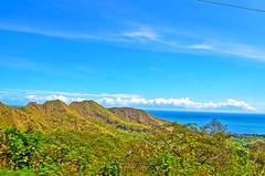 En lo alto de la cima (wilderysromero) Tags: naturaleza mar arboles paisaje aves cielo campo colina montaña aire libre altura cima