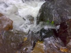 27072008378 (Gokul Chakrapani) Tags: waterfalls karnataka westernghats bolle charmadi