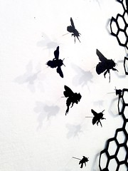 MBosley_Bees (TheWayThingsWere) Tags: silhouette paperart silhouettes papercut papercuts papercutting mollybosley