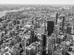 Manhattan Island, New York City (jag9889) Tags: nyc newyorkcity bridge blackandwhite bw usa ny newyork building water monochrome les architecture brooklyn skyscraper river observation puente crossing unitedstates outdoor manhattan unitedstatesofamerica lowereastside bridges aerialview landmark ponte midtown deck observatory esb brooklynbridge manhattanbridge eastriver infrastructure pont empirestatebuilding brcke suspensionbridge lowermanhattan waterway williamsburgbridge openair madisonsquare 2016 kingscounty k130 k131 jag9889 k179 20160610