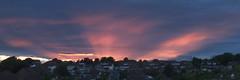DSCF5649 (baskill) Tags: sunset sun set downs sussex