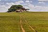 Gol Kopjes (Grete Howard) Tags: golkopjes kopje serengeti tanzania safari safariinafrica bestsafarioperator bestsafaricompany whichsafaricompany whichsafarioperator animals animalphotos animalsofafrica africa africansafari africanbush africananimals animal birds birdwatching birding gamedrive