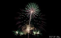 Exploding bouquet (PerfumeG2011 (off & on). Slowly trying to catch up) Tags: longexposure sky canada art beautiful nikon colours nightshot montreal firework millenniumpark pyrotechnics 2016 ftenationale fireart firerworks d7000 nikond7000 dorvalqubec