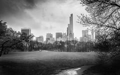 View from Central Park on a Rainy Day (gfanchui) Tags: iphone rain raining newyorkcity newyork sheepmeadow grass park