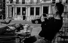 (DeepSane) Tags: london mobile pigeons streetphotography