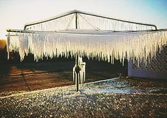 Nothing like a cold winter's day #frost#icicles #winter (carolyn2007###) Tags: icicles frost winter