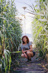 among the reeds (brenkee) Tags: girl wooden pathway reed lake casual canon eos 3 85mm 18 cinestill 50d c41 film motion picture portrait