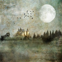 .. once upon a time .. (Kerstin Frank art) Tags: moon building castle texture birds fairytale woods oldtime kerstinfrankart creativephotocafe