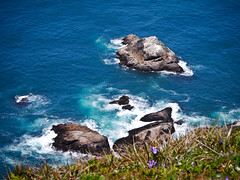 Point Reyes (Julien_V) Tags: ocean california park blue usa pacific bleu pointreyes parc californie ocan pacifique
