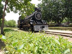 P 31652 (dennis_972000) Tags: new india delhi indian jacob steam p dennis railways locomotives irfca 31652
