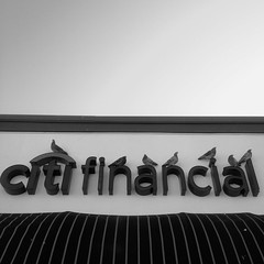 CitiFinancialBird (Jeremy Brooks) Tags: california blackandwhite bw usa birds animal sign blackwhite pigeon iphone pinole contracostacounty hueless