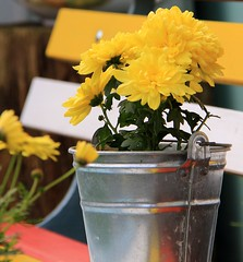 (Linda6769 (OFF)) Tags: germany bench bucket village thuringia yellowflower flowerbox brden
