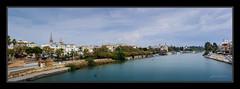 Sevilla (jmbarcia) Tags: bridge espaa building primavera water rio river puente spring sevilla spain agua aqua europa europe torre edificio panoramic andalucia campanile panora