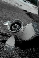 Turbo Prop (Lewis Adams Photography) Tags: uk pink blue sunset red sea england orange macro green bird abandoned love water beautiful clouds train sunrise river fire photography suffolk cool nice swan nikon glow d70s nikond70s ants ipswich woodbridge reclaimed selectivecolor macrophotography riverdeben 2013 dibaday