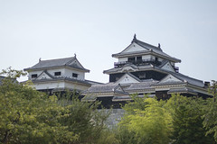愛媛の松山城