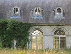le dsespoir des singes (46) (Nicolas Fourny photographie) Tags: windows abandoned decay urbanexploration decayed urbex abandonedplaces beautifuldecay frenchwindows abandonedcastle chteaudessinges