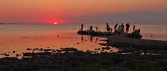 Enjoying the Sunset (:NFR:) Tags: sunset summer evening skne sommer august solnedgang aften torekov 2013
