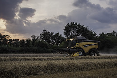 Combine Harvester (MattofTaylor) Tags: new holland barley wales corn farmers farm farming crop combine harvester cx840