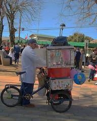 Algodonero (Patricio Ávila) Tags: tradiciones fiestaspatrias profesiones algodonero